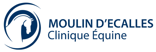 Clinique Moulin d'Ecalles